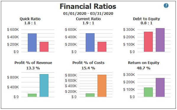 Financial Ratios in PROCAS Accounting Dashboard